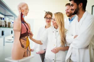 Med Tech Programs - How to Become a Medical Technician